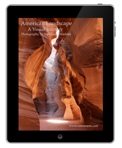 American Landscape; A Visual Journey